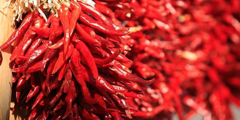 muchos chiles rojos colgados